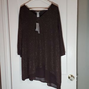 BNWT Catherine's Size 1x Brown Shimmery Tunic